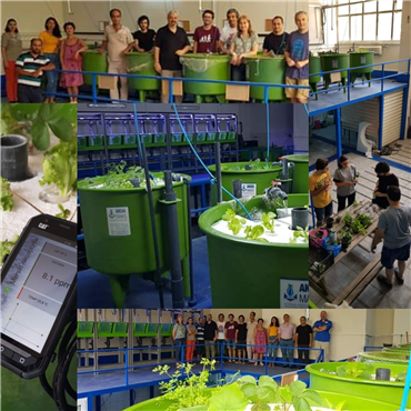 Basic Aquaponics Training
